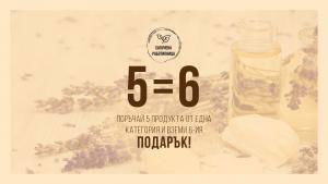 SoapFactory_Website (1)